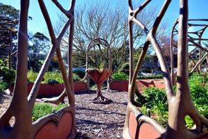 annas garden 05 14